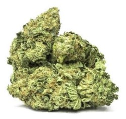 girl-scout-cookies-cannafarms
