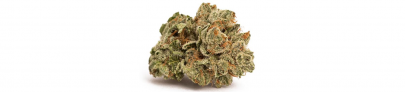 Alien Dawg Indica Dominant | Canaca